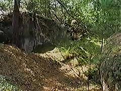 Explorador Follado por un Granjero